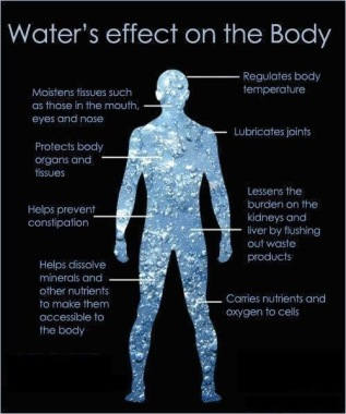 water effects on body