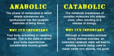 anabolic-vs-catabolic